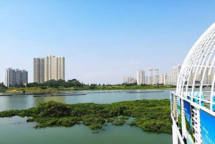 彰泰觀江海實景圖