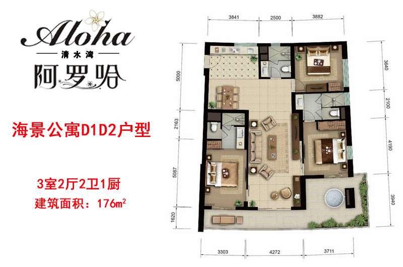 阿罗哈清水湾海景公寓D1D2户型图